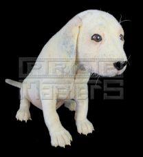 102 DALMATIANSOddball Puppy Stand-In